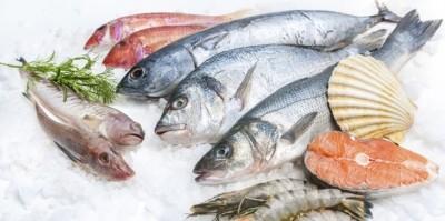 Seafood at Costco Australia